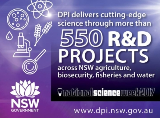 nsw dpi national science week